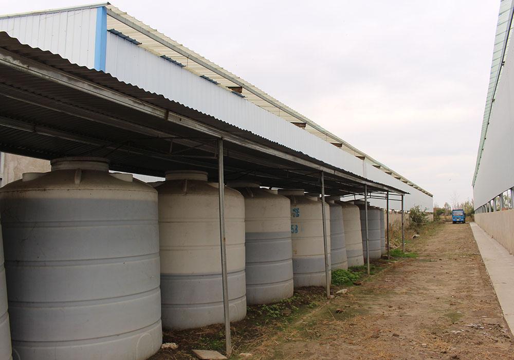 水溶肥厂家